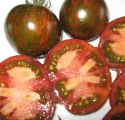 Black Zebra Tomato TM708-20_Base
