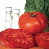 Burpee Supersteak Tomato TM26-20_Base