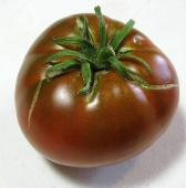 Cherokee Chocolate Tomato TM748-20_Base