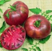 Cherokee Purple Tomato TM34-20_Base