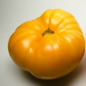 Hawaiian Pineapple Tomato TM333-20_Base