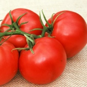 Honey Tomato TM615-10_Base