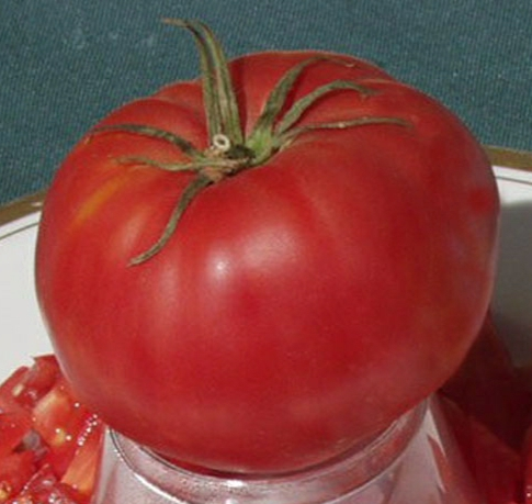 Large Pink Bulgarian Tomato TM689-10_Base