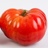 Marizol Red Tomato TM687-10_Base