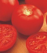 Miracle Sweet Tomato TM81-10_Base