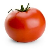 Rally Tomato TM891-10_Base