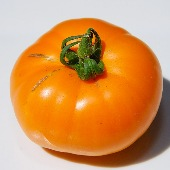 Russian Persimmon Tomato TM724-10_Base