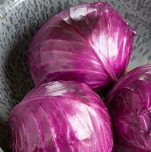 Ruby Perfection Cabbage CB33-50_Base