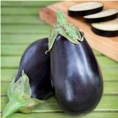 Black Beauty Eggplants EG2-20_Base