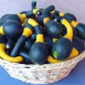 Koshare Yellow Banded Gourds GD48-10_Base