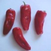 Cayman Hot Peppers (Red) HP1135-10