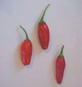 Cobincho Hot Peppers HP872-10_Base
