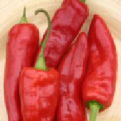 Dancing Spirit Hot Peppers HP2035-10