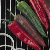 Goliath™ Griller Hot Peppers HP1898-10