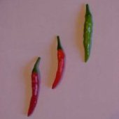 Hahong Ku Chu Hot Peppers HP1059-20_Base