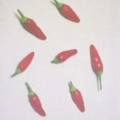 Hawaiian Hot Peppers HP1142-10