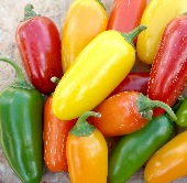 Numex Pinata Hot Peppers HP312-10_Base