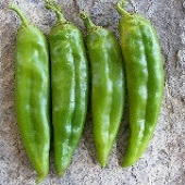 NuMex Heritage Big Jim Hot Peppers HP2206-20_Base