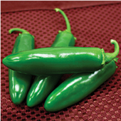 Spicy Slice Hot Peppers HP2256-10_Base