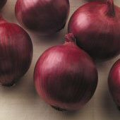 Red Zeppelin Onions ON49-100_Base
