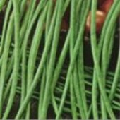 Asparagus Yard Long Pole Beans (Black Seeded) BN1-50_Base