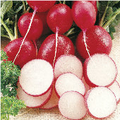 Cherriette Radishes RD14-50