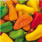Yum Yum Mix Sweet Peppers SP343-10_Base