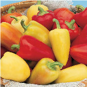 Antohi Romanian Sweet Peppers SP3-20_Base
