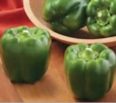 Bayonet Sweet Peppers SP371-10_Base