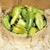 Key Largo Sweet Peppers SP224-10_Base