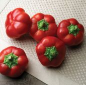 Right on Red Hungarian Cheese Sweet Peppers SP356-10_Base