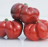 Round of Hungary Sweet Peppers SP262-20_Base