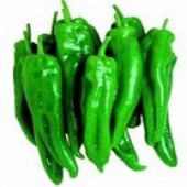 Spanish Spice Sweet Peppers SP67-10_Base