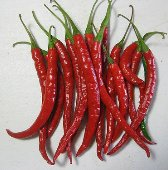 Sweet Cayenne Peppers SP201-20_Base