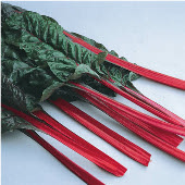 Rhubard Swiss Chard SW11-50_Base