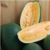 Sweet Siberian Watermelons WM53-10_Base