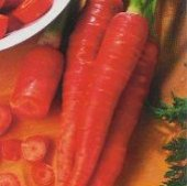 Nutri Red Carrots CT19-100