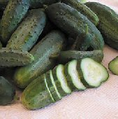 Snow's Fancy Pickling Cucumbers CU110-20_Base