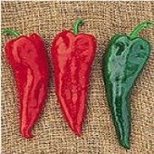 Crimson Hot Peppers HP64-20