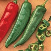 Garden Salsa Hot Peppers HP86-10