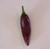 Mareko Fana Hot Pepper HP1017-10