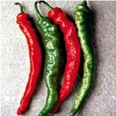 Mesilla Hot Peppers HP152-20_Base