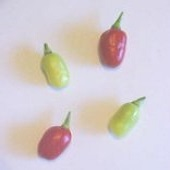 Puppy Hot Peppers HP193-20