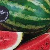 Kleckley's Sweet Watermelons WM13-20_Base